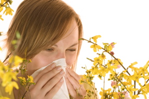 ayurveda allergy treatment